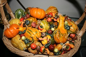 autumn-gourds-for-fall-decorations-by-alasam.jpg