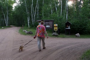 dog-on-walk-rv-park.jpg