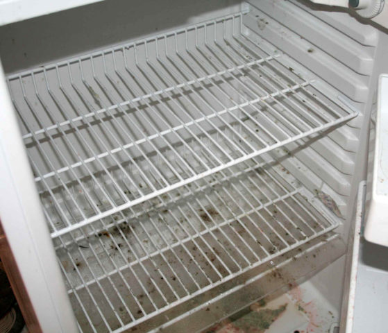 Mold inside an RV refrigerator is a common problem. photo by MinivanNinja on Flickr