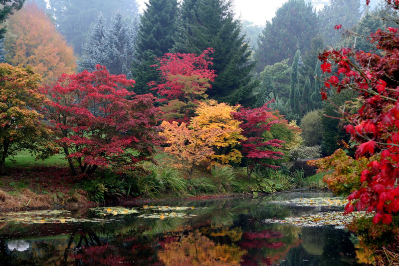 Fall Foliage Tours Enjoy The Autumn Colors From Your Rv